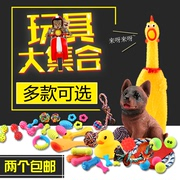 The dog bite molar sound scream Teddy toy toy ball bear golden retriever puppies screaming chicken pet supplies