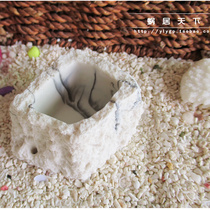 (Square Basin-worm house World) Hermit crab dedicated water dispenser feed bowl food dish resin moisture-proof and durable
