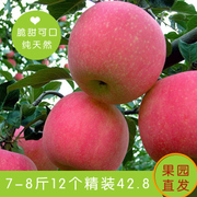 Shipping Shanxi red apple Fuji Posts word Apple 12 Pack Linyi specialty Christmas fruit.