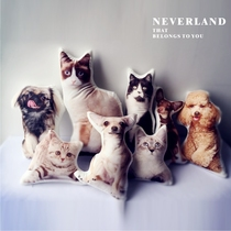 neverland shaped pet pillow custom photo Christmas send friends private company buy beautiful diy