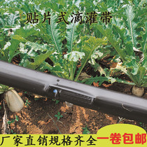 Micro Spray belt dropper with agricultural shed vegetable film 16 smd drip irrigation with drip irrigation pipe water-saving irrigation equipment
