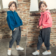 Autumn girl set 2017 new children with Cashmere Sweater Hoodie thickened Childrens Boys two piece clothes tide