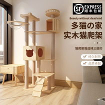 Cute help cat climbing frame Full solid wood space capsule cat frame Cat tower Cat nest Cat tree one-piece villa cat jumping platform toy
