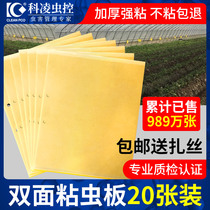 Yellow board double-sided armyworm board trap paper paste yellow flying insect small black flying stick fruit fly trap Sticky board needle bee greenhouse