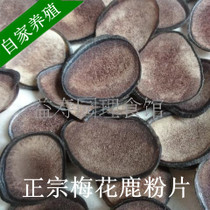Deer antler slices of red powder slices have gift boxes and white powder slices of wax piece authentic Changbai mountain antler slices