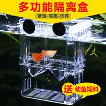 Fish tank isolation box peacock fish breeding box zebra small fish incubator anchovies suspended pressure kryptone spawning room