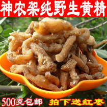 Shennong frame Pure Wild yellow essence wild chicken head Chinese herbal medicine making yellow essence tonic wine 500 g