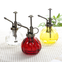 Glass retro watering pot pot fleshy gardening pneumatic watering can watering can watering can spray