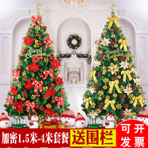 Large Christmas Tree Package 1.5 1.8 2.1 2.4 3 4 m luxury encryption home Christmas tree decorations