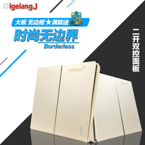 Switch socket Borderless Panel classic champagne gold two open dual-control large plate fluorescent power supply 86 wall Dark