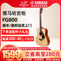 Mountain leaf guitar FG800 ballad single-board wood guitar FGX800C electric box piano male and female students 41 40 inches