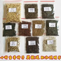 10 kinds of balcony planting seeds summer and autumn Four Seasons Vegetable SEED package garden vegetables rapeseed fertilizer