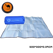 Freedom Boat Camel 200*200 Aluminum Film Moisture-proof Pad 3-4 People Aluminum Foil Pad Outdoor Camping Tent Picnic Pad