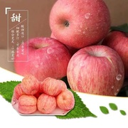 Fresh apple crisp value Linyi red Fuji products not shipping 10 pounds of fresh wax