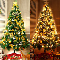 1.5 1.8 2.1 2.4 3 4 5 m pine needle Christmas Tree Package decorative supplies Large scene layout