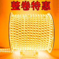 LED light with 220V outdoor waterproof 24V project site tunnel living room highlighted yellow and white light strip 100 meters