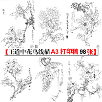 Wang Daozhong 98 Gongbi flowers and birds sketch print A3 Chinese painting final draft Physical draft painting practice learning
