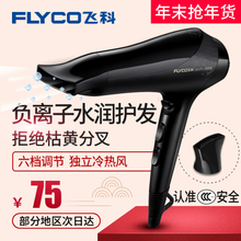Home Branch hair dryer high-power hair salon barber hot and cold negative ion mute student hair dryer tube