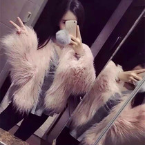 Star baby with the same paragraph fur coat pink imitation beach wool fur short coat long - haired women hairy short coat