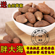 Chinese herbal medicine selection extra fat sea fat Sea tea fat sea sulfur-free fat sea 500g