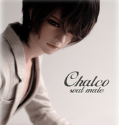 BJD SD soom [SO] Chalco 1/3 doll doll doll uncle joint forest divided sleep eye makeup to send