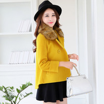 Female short autumn and winter plus size wool coat Hangzhou Korean fur collar coat NH new Joker shawl