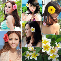 Simulated African chrysanthemum head flower hairpin Japanese flower headdress bohemian seaside holiday swimsuit Accessories