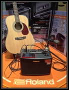 Roland /ROLAND AC-33 AC33 folk guitar sound portable speakers and speakers