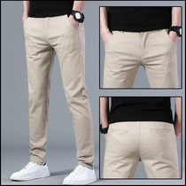 Trend non-hot casual pants mens summer thin business slim small feet pants Korean edition elastic solid color mens pants