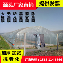 Agricultural drip-free film thickening transparent plastic film greenhouse film Vegetable insulation shed film culture black and white film PO