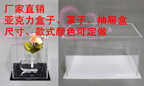 Custom-made processing acrylic plate plexiglass transparent display doll box hood to map sample customization