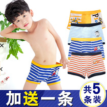 Cotton big Virgin Boy 8 year old boxer shorts