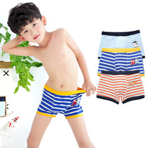 Boys ' cotton Big boy 10-15 year old panties