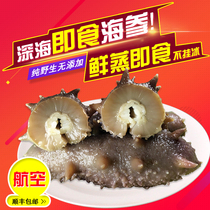 Fuxing Island Sea Cucumber ready-to-eat sea cucumber single-loaded seaweed sea cucumber ready-to-eat Dalian wild 500g