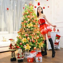 1.2 1.5 1.8 2.1 m Deluxe Small Christmas Tree package pine needles Home Christmas set decorations