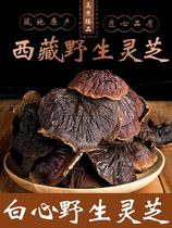 Wild Reishi Tibet Special White Heart Chiring Zhizhi grass authentic whole Reishi chip gift box 250g can be powdered