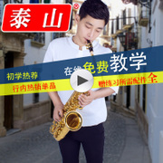 Taishan saxophone playing professional beginners authentic 5000 EB Alto Sax instruments SF