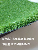 12 mm 16MM Double color mixed high density golf green Grass Project artificial short turf casual goalball grass