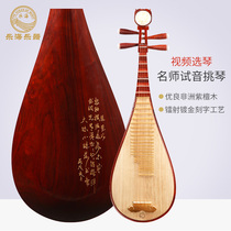 Le Hai pipa instrument professional rosewood 912-2 pipa blossom rich adult play lute