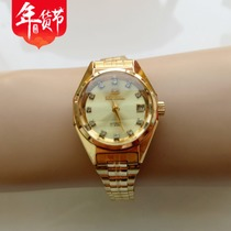 Antique Collection Table Inventory Tianjin watch Factory seagull automatic women Woman Womens mechanical watch womens Table