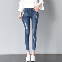 Korean version of the elastic high waist slim hole in the curl fall feet pants