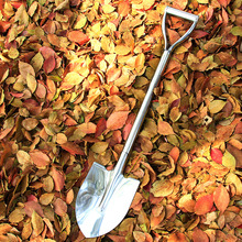 Big shovel, outdoor digging, stainless steel shovel, household shovel, planting flowers, planting trees, wild herbs, gardening tools, and turning over soil.