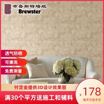 Brewster Joan House Yuyu SZ001443 plain paper wallpaper bedroom living room TV background wall modern simplicity