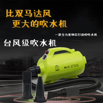 Enbefo double motor blower in the large dog pet cat dog home drying hair dryer dryer hair dryer.