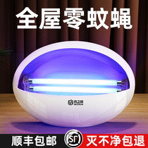 Fly lamp Mosquito lamp Household hanging wall dip trap restaurant Restaurant Outdoor Insect killer fly artifact Commercial shops