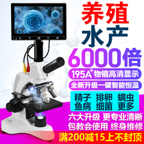 Microscope high-fold optical professional biology 6000 times aphid sperm egg aquaculture detection scientific experiments