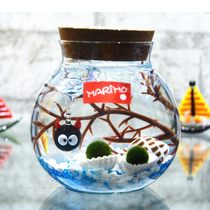 Holiday birthday gift happiness seaweed ball marimo creative micro landscape ecological bottle DIY ornaments hydroponic plants