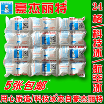 Technology Ice Bag Haojielite Airlines 24 Chequered Fruit Fresh-keeping and Refrigerated Express Special Dry Ice Bag