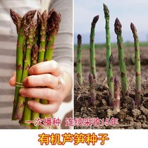 American Eagle Asparagus seeds purple passion asparagus seeds green purple asparagus seeds vegetable seeds 15 years continuous mining