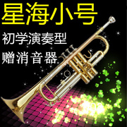 Genuine Xinghai trumpet B flat instrument playing trumpet beginner grading type electrophoresis gold hot sales promotion